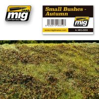 SMALL BUSHES – AUTUMN