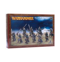 обзорное фото HIGH ELF SHADOW WARRIORS CITIES OF SIGMAR
