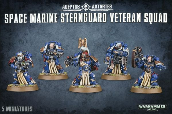 preview SPACE MARINE STERNGUARD VETERAN SQUAD